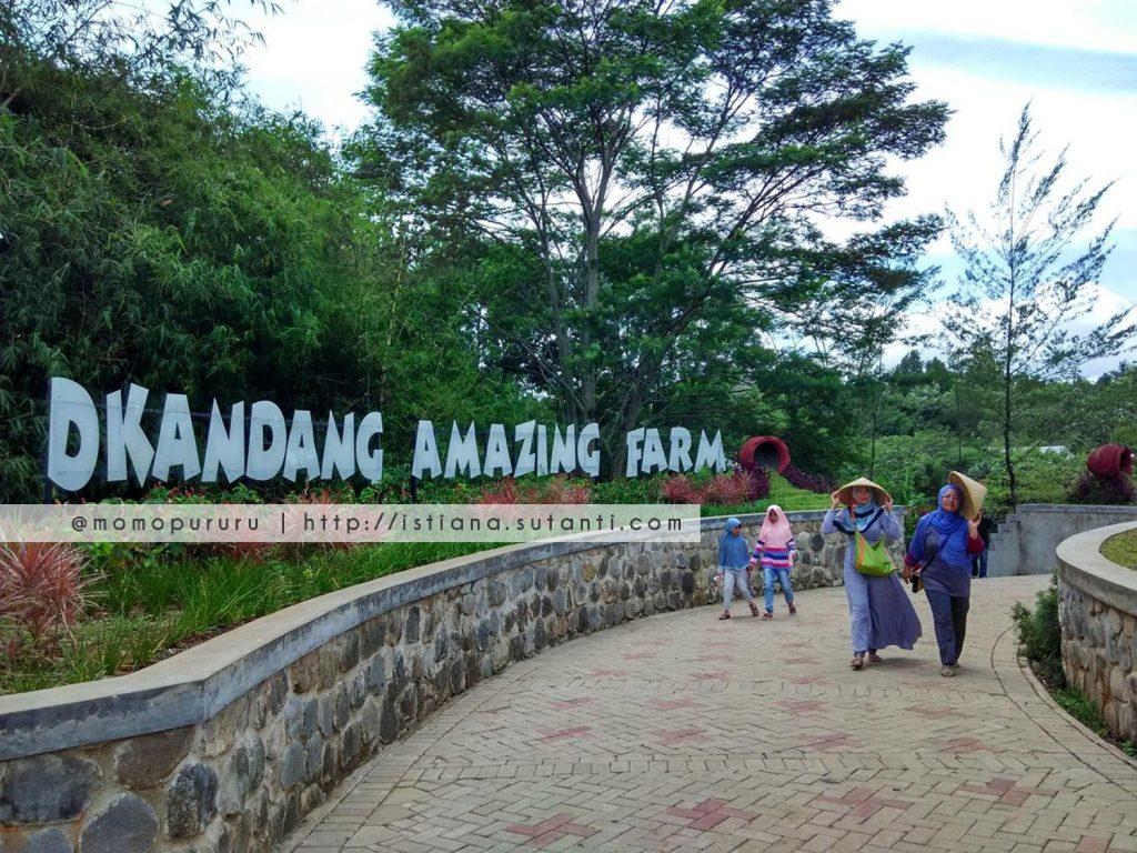 dkandang amazing farm depok 10 Tempat Rekreasi Edukatif Terbaik di Jakarta dan Sekitarnya namenoble.com web hosting terbaik
