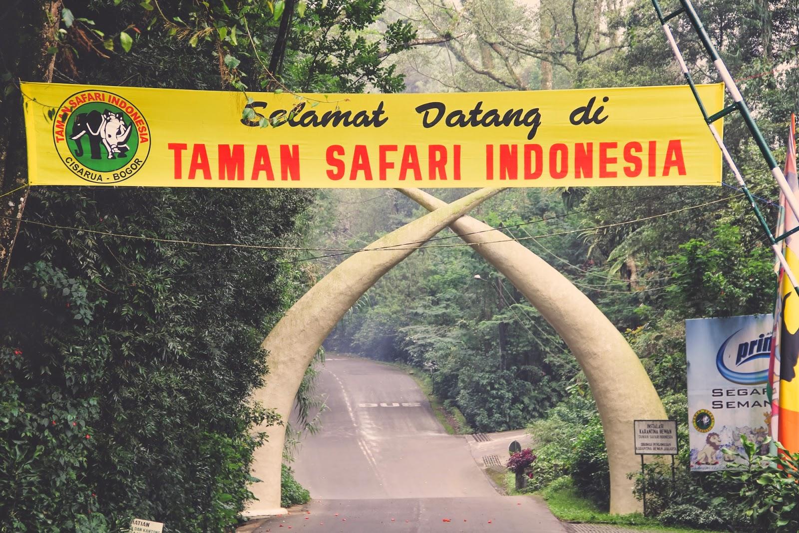 taman safari indonesia 10 Tempat Rekreasi Edukatif Terbaik di Jakarta dan Sekitarnya namenoble.com web hosting terbaik